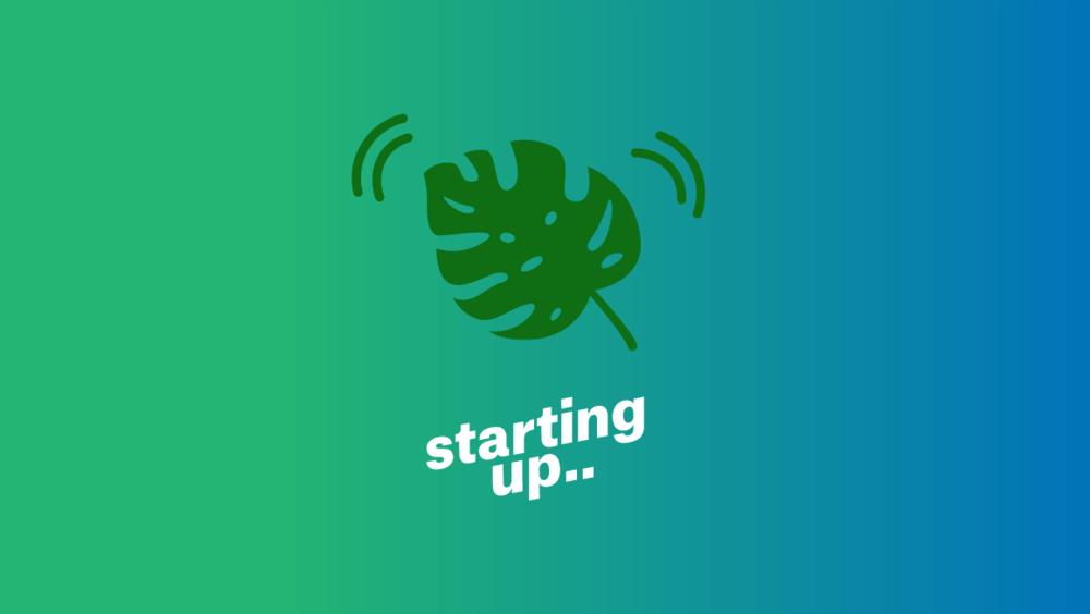 Large startup leaf