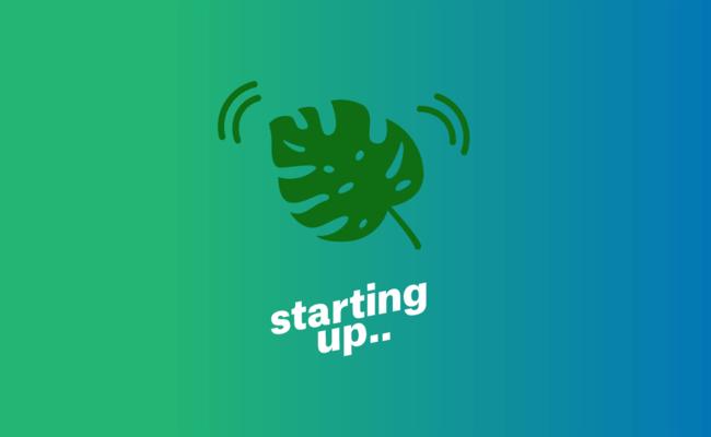 Medium startup leaf